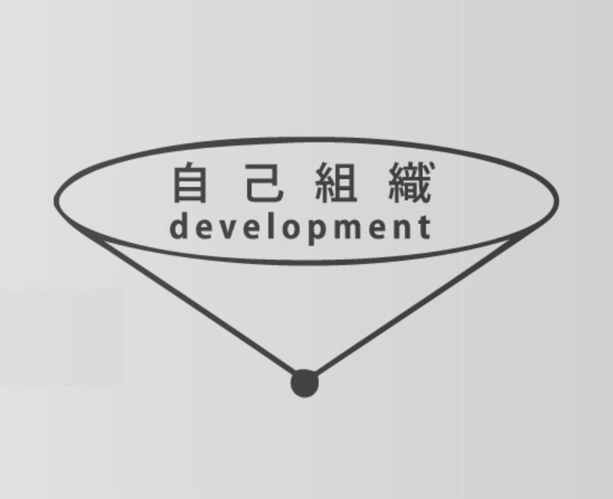 自己組織ディベロップメントのイメージ
